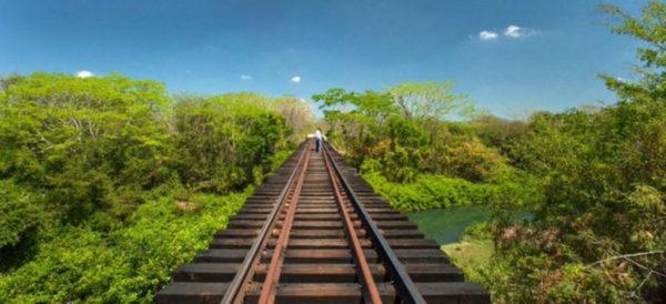 Conceden suspensión para evitar construcción de Tren Maya. No hay notificación: Fonatur