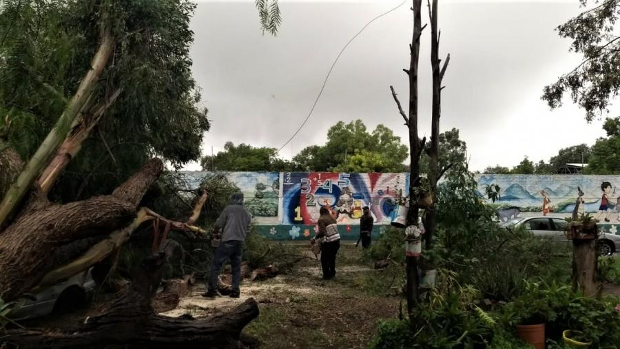 ATENCIÓN OPORTUNA POR LLUVIAS BRINDA SERVICIOS MUNICIPALES DE SOLEDAD
