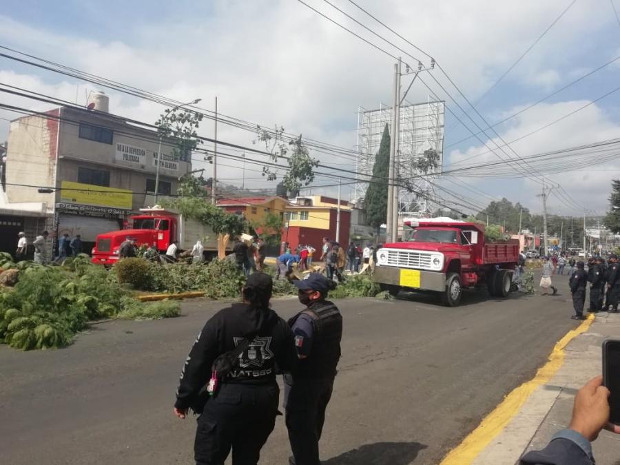 Vecinos de Atizapanes se enfrentan a policías para detener tala de árboles