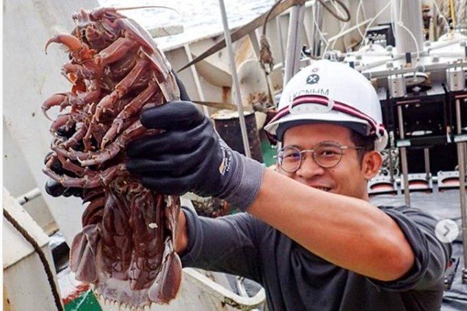 Científicos encuentran cucaracha gigante en el fondo del mar