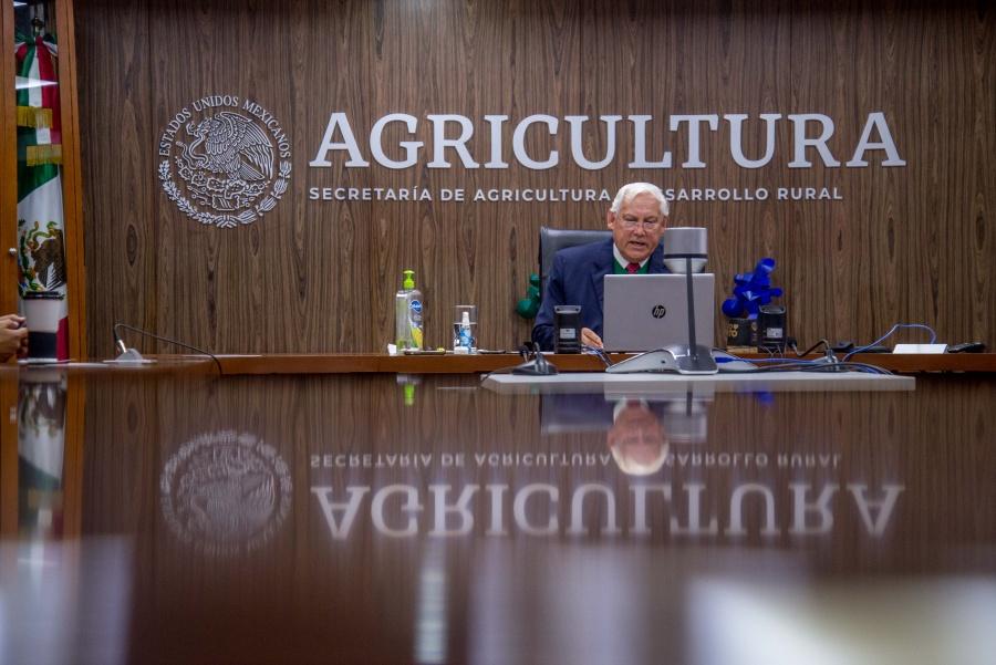 Rubro agroalimentario, clave para la recuperación económica: Víctor Villalobos Arámbula