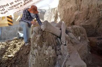 Descubren restos de mamuts en Tultepec