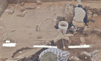 Van 238 huesos de 7 mamuts rescatados en Tultepec