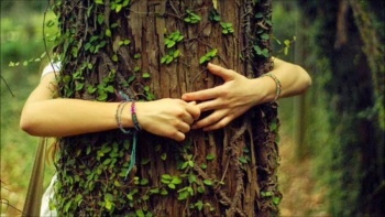 La naturaleza favorece el bienestar físico y psíquico del ser humano