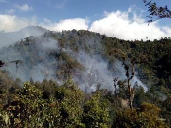 """Semarnat controla incendio en """"El Triunfo Chiapas"""""""