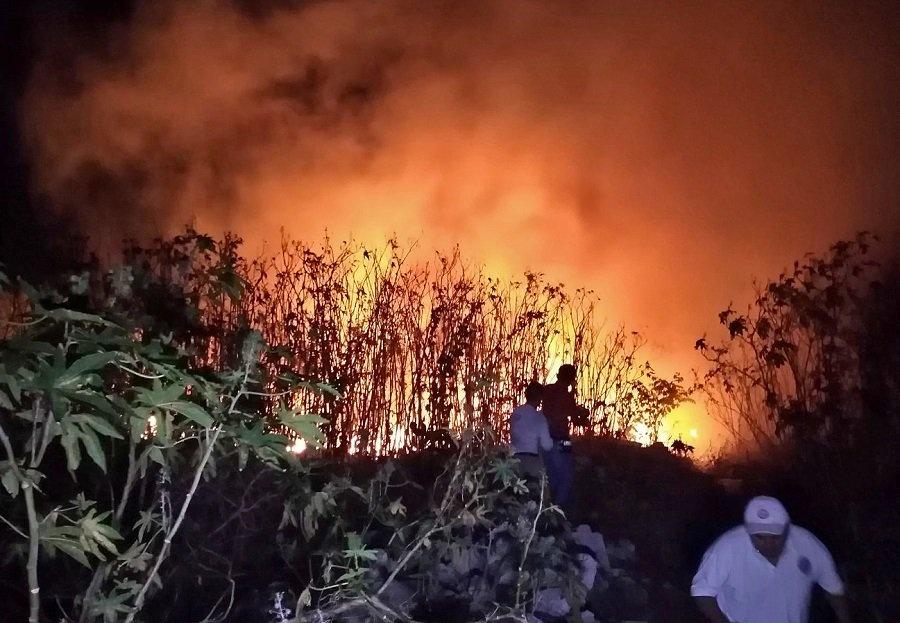 Son consumidas 200 hectáreas en Manglar de Campeche por un incendio