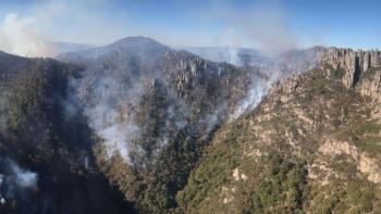Incendio consume 35 hectáreas en sierra de San Luis Potosí