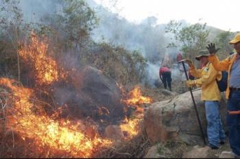Llaman a controlar incendio forestal en Guerrero