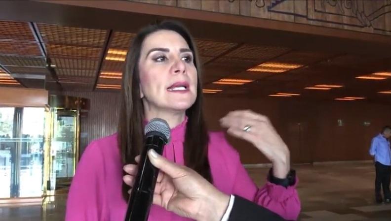 La carga de programas clientelares en el presupuesto federal impedirá disminuir desigualdad en el país: Soraya Pérez