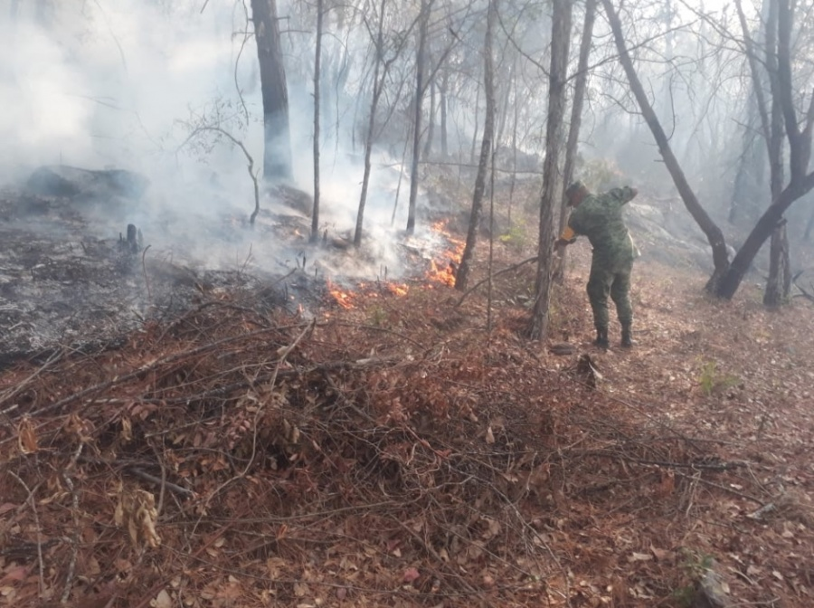 Sedena aplica Plan DN-III-E, por incendios en Durango, Querétaro y Tabasco