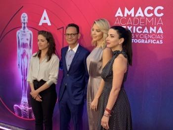Conoce los nominados al Ariel 2019