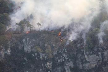 Reportan 170 hectáreas afectadas, por incendio en sierra de San Miguelito, SLP