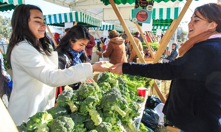 Mercado del Trueque llega al Bosque de Tlalpan este domingo