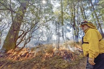 Crisis ambiental pudo evitarse, indica la UNAM