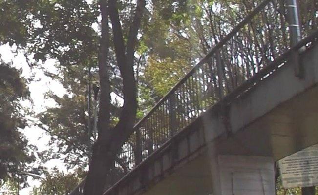 Encuentran a hombre colgado en puente peatonal de Peralvillo