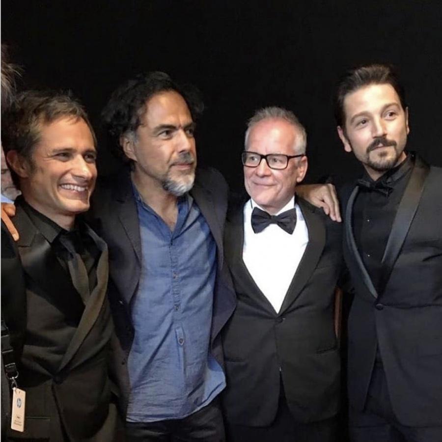 """""""Los Charolastras"""", brillan en Cannes"""