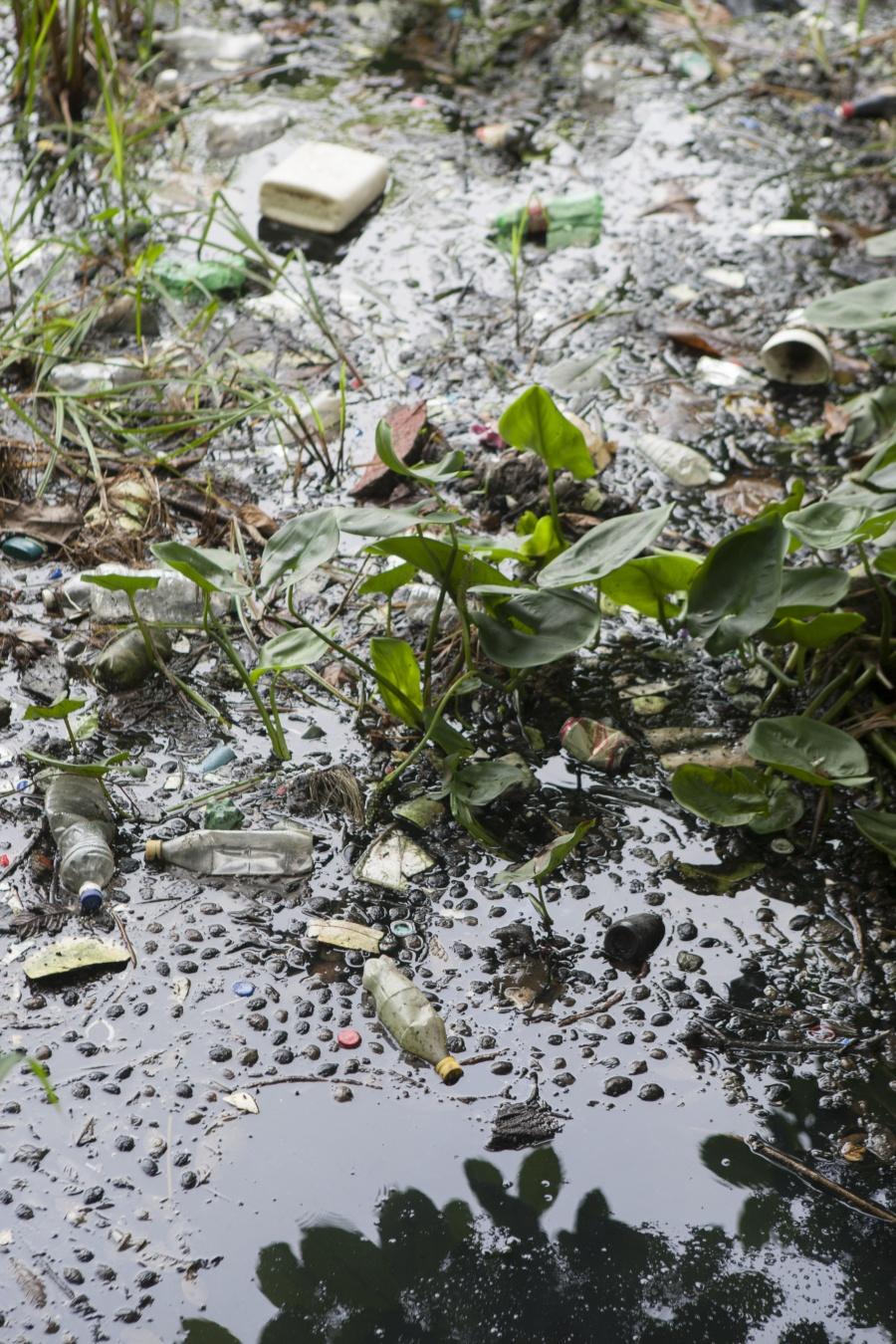 Buscan combatir la contaminación por plásticos en el país