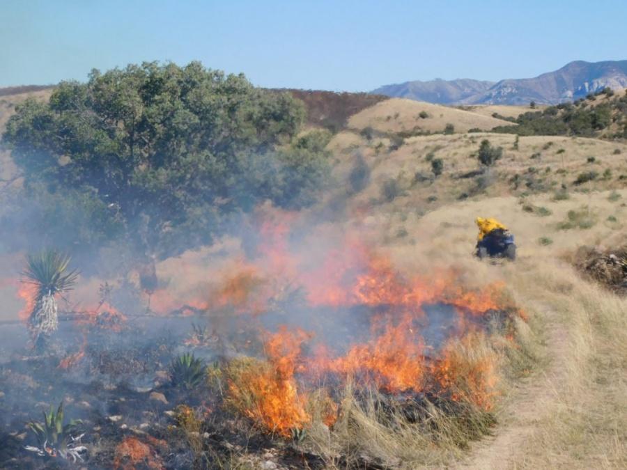 Se registran 104 incendios forestales en territorio nacional: CONAFOR
