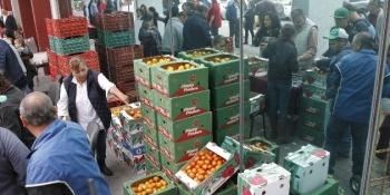 Presentan en EU propuesta para nuevo acuerdo de importación de tomate de México