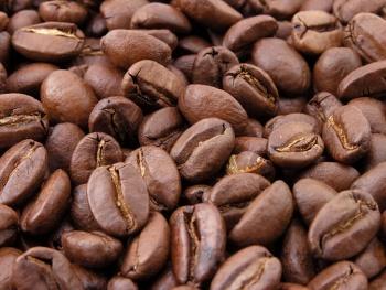 Vive industria del café una de las peores crisis