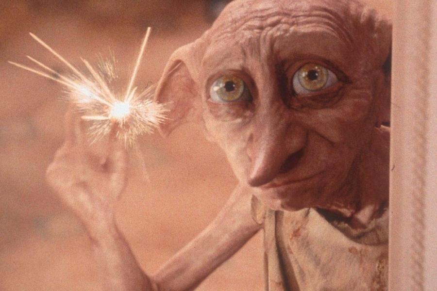 """Captan a un """"Dobby"""" en la vida real"""
