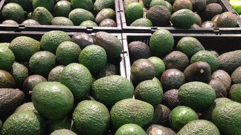 Aguacate se vende hasta en 80 pesos