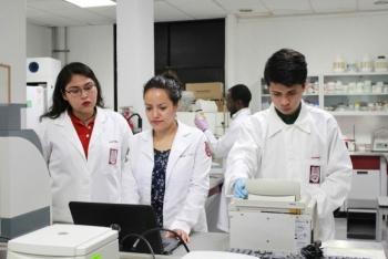 IPN estudia ADN de insectos para fortalecer control de enfermedades