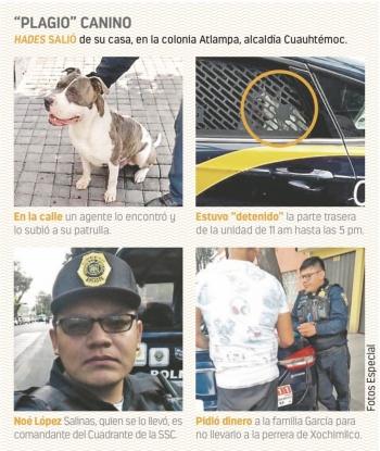 """Policía """"secuestra"""" a un perro; pedía $2 mil 500"""