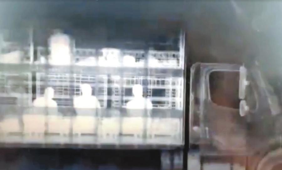 Policía Federal rescata a 51 migrantes de camión de carga