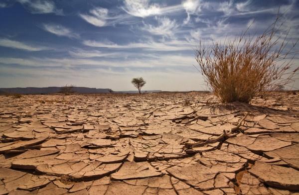 Para 2050, algunas ciudades tendrán climas jamás vistos