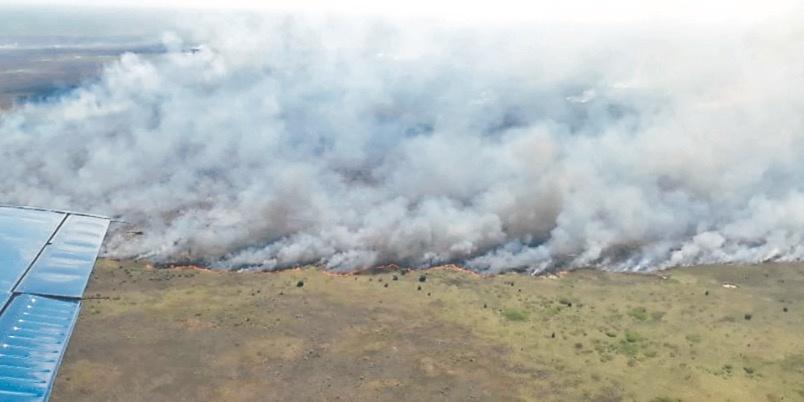 Incendio consume reserva en Quintana Roo