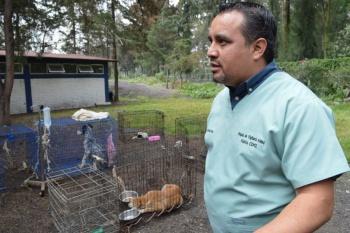Brigada de vigilancia animal de la SSC cuida la integridad de las mascotas de los capitalinos