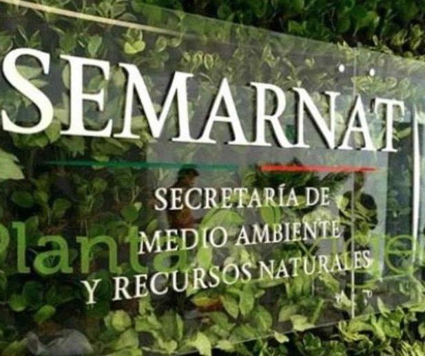 Con reservas, la Semarnat autoriza proyecto Santa Lucía