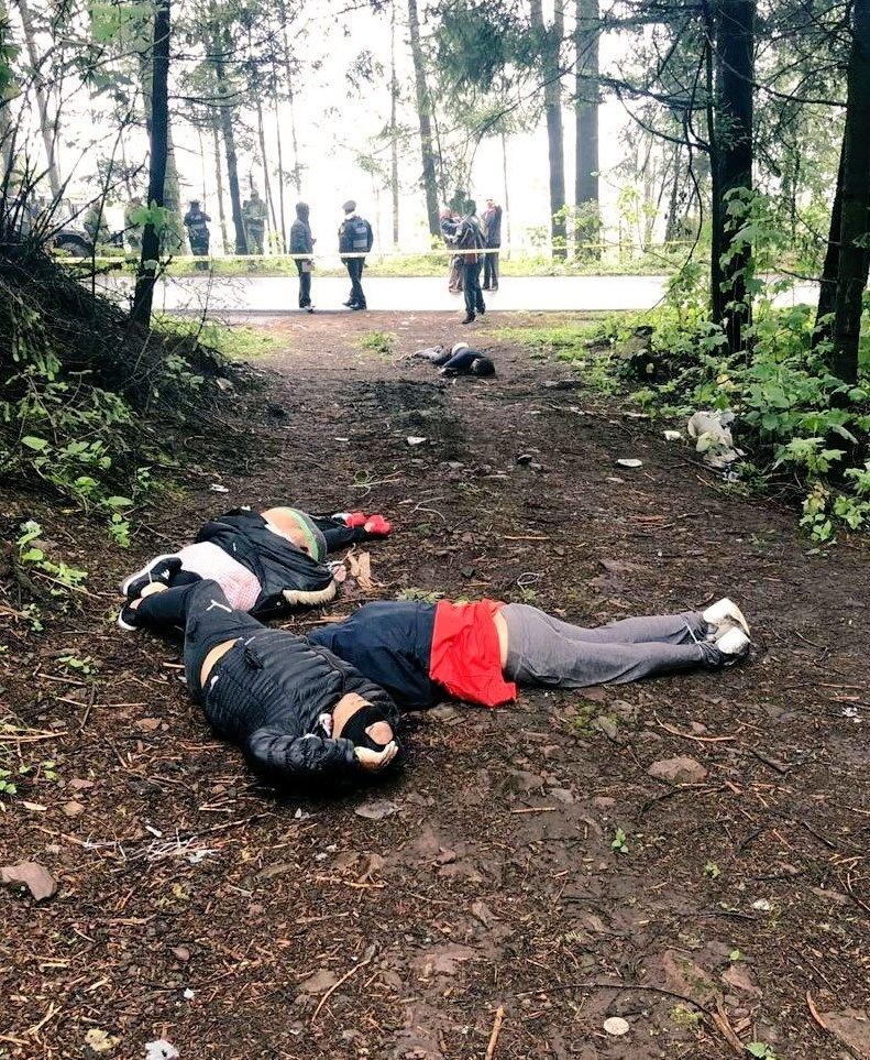 Encuentran cuatro cadáveres en paraje de la carretera Picacho-Ajusco