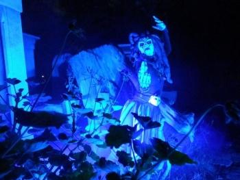 Estrenan séptima temporada de 'Sobrenatural' en Xochimilco