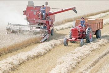 México va por más mercado agroalimentario hasta Qatar