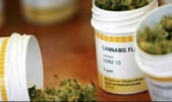 Ordenan a Salud reglamentar el uso medicinal de Canabis