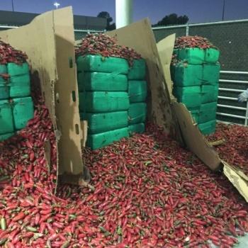Detectan toneladas de marihuana en cargamento de chiles en California