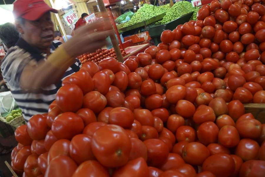 México y EU logran acuerdo de tomate tras 2 años de negociaciones