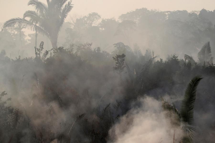 Días grises visten el Amazonas ante avance del fuego