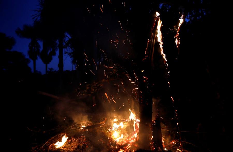 Ofrece México apoyo a Brasil para combatir incendios en el Amazonas