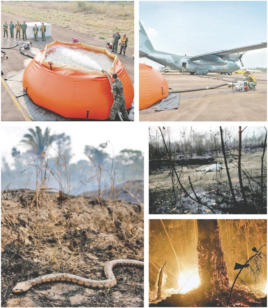 El g-7 acuerda ayudar a afectados por los incendios en la Amazonía