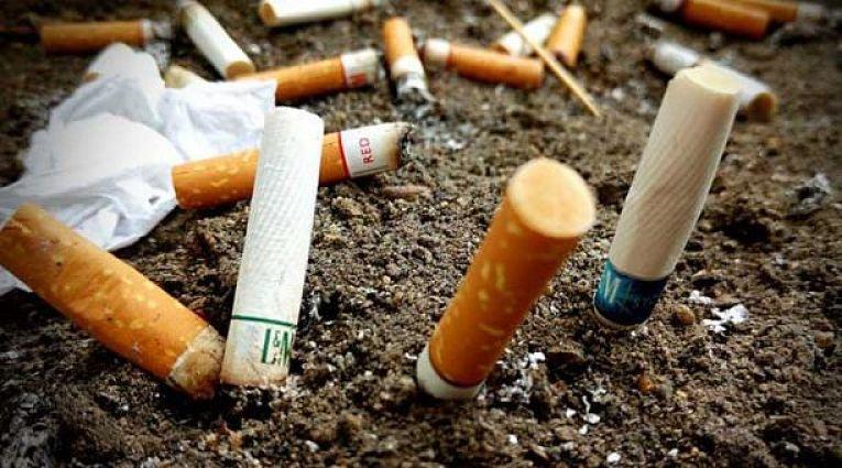 Colillas de cigarro contaminarían más que los popotes