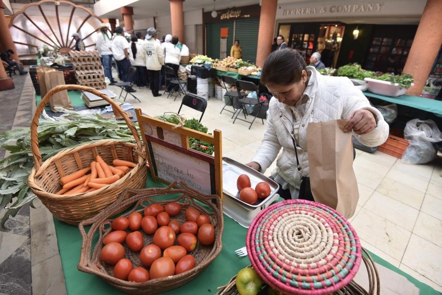 Buscan impulsar la agricultura orgánica y agroecológica en México