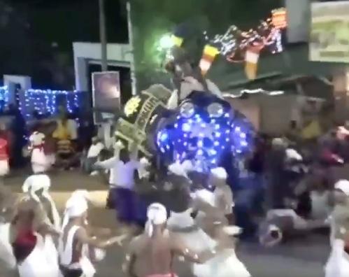 Elefante arrolla a personas en desfile en Sri Lanka