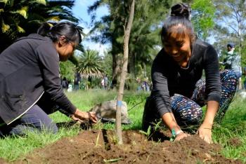 Plantan más de 2.5 millones de árboles en CDMX