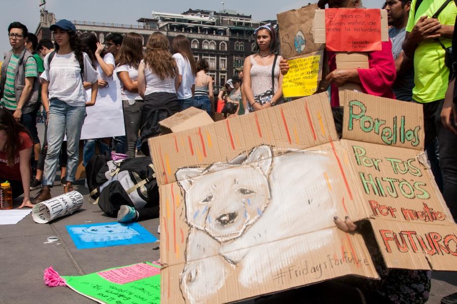 Se manifiestan ambientalistas en Reforma y llegarán al Zócalo