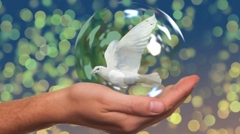 Con enfoque climático, conmemoran el Día Internacional de la Paz