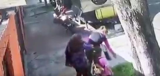 Captan a mujeres robándose un árbol en Azcapotzalco
