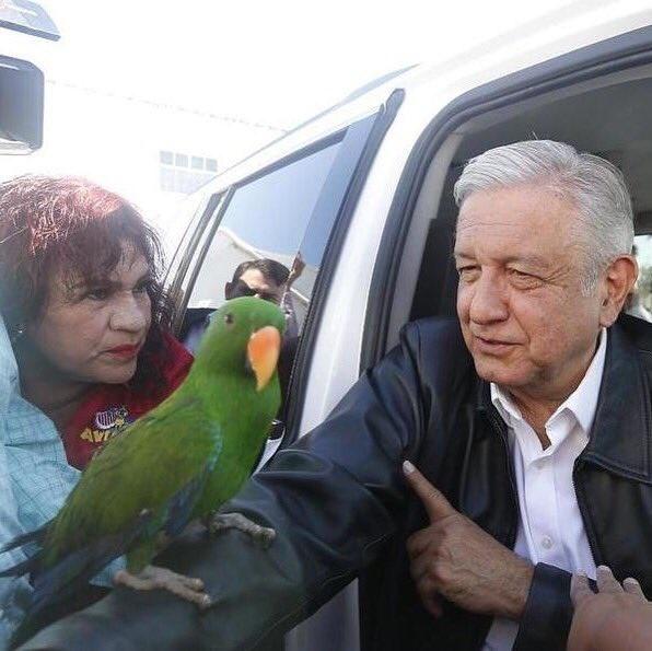 Singular obsequio llevaron al presidente López Obrador en Coahuila